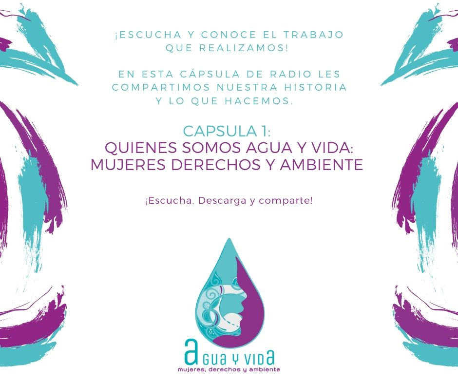 Cápsula de Radio: Quiénes somos Agua y Vida