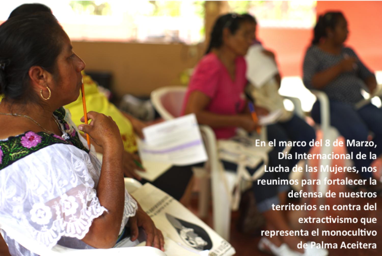 Pronunciamiento de las Mujeres frente a los monocultivos de Palma Aceitera