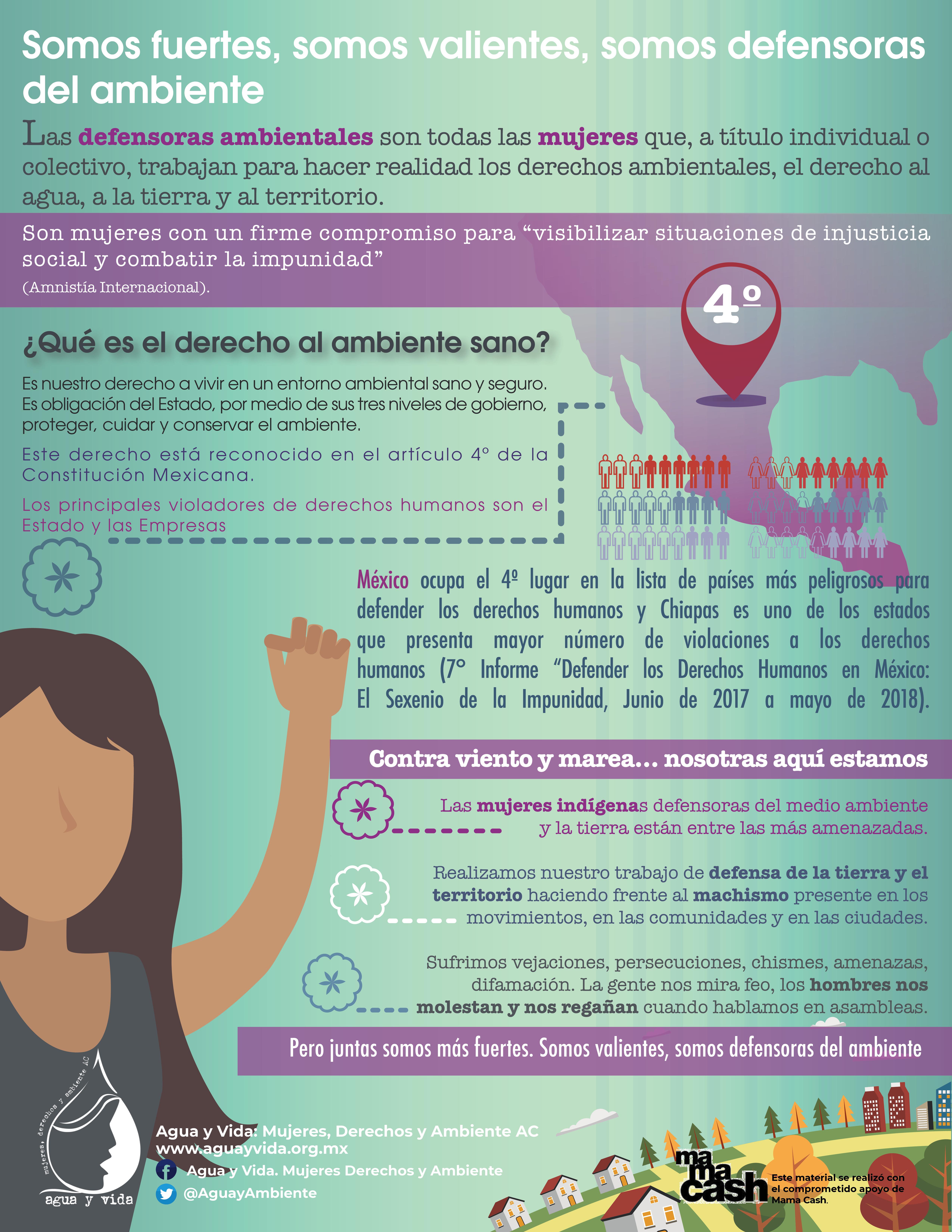 Infografía Somos Defensoras Ambientales