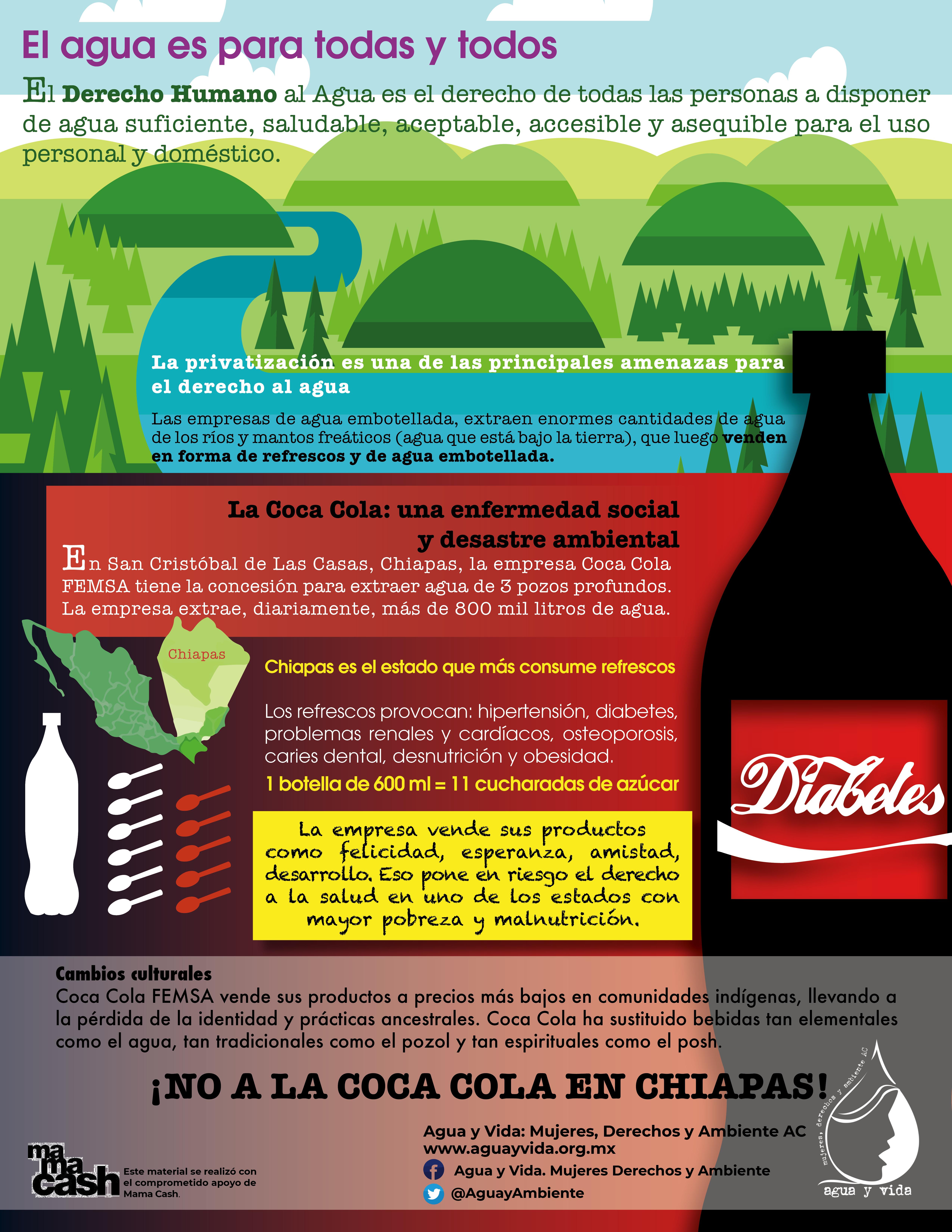 Infografía No a la Coca Coca